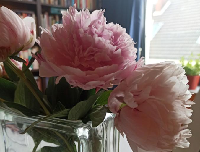 Frische Blumen auf dem Schreibtisch